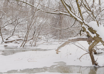 Humber River, March 2, 2019.